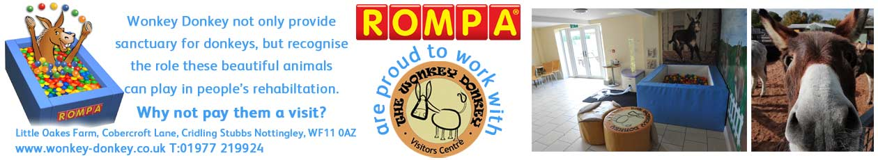 Rompa Working with Wonkey Donkey