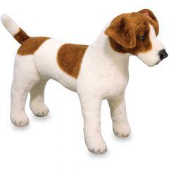 Pedigree Pal - Jack Russell Terrier