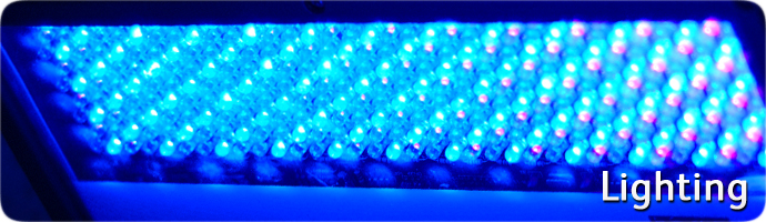 Sensory Room Lighting