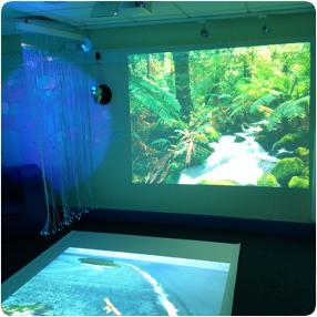 Springwood Primary Sensory Room