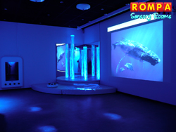 pompom Sensory Room Wallpaper